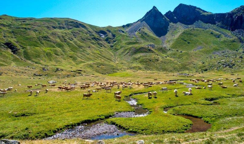 Valles del pirineo aragon s huesca la magia - Casas en el valles occidental ...