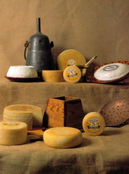 productos villavillera