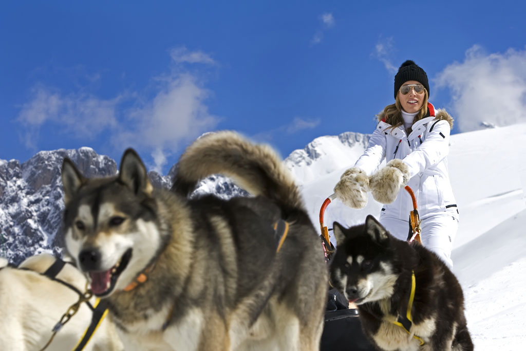 Mushing. Fuente www.aramon.es