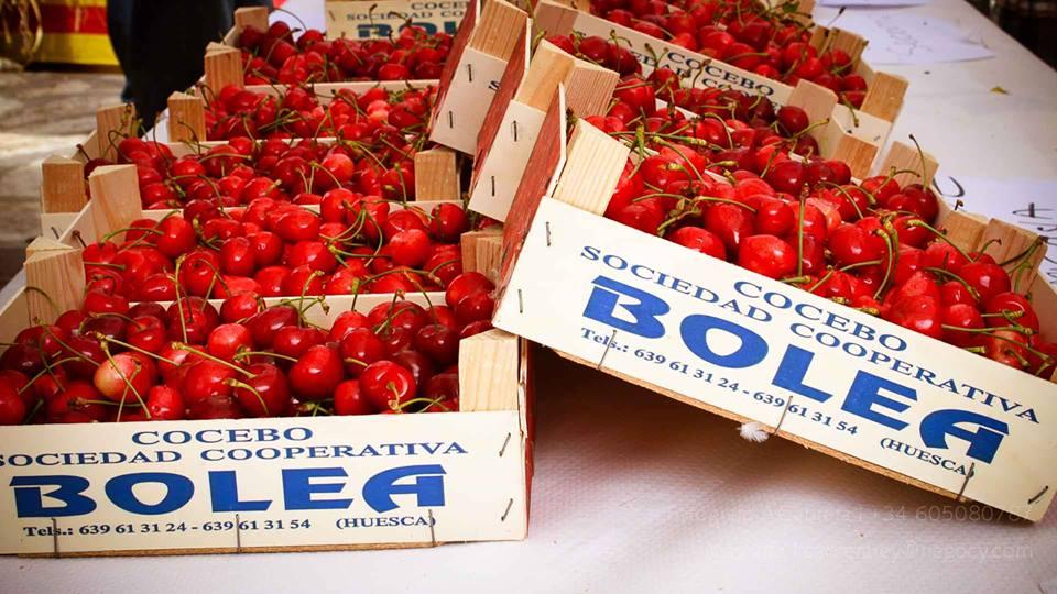 Feria de la cereza Bolea