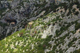 🐾⛪️ Un paseo espectacular a la Virgen del Castillo de Rodellar