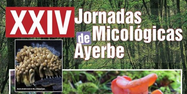 Jornadas Micológicas de Ayerbe 2014