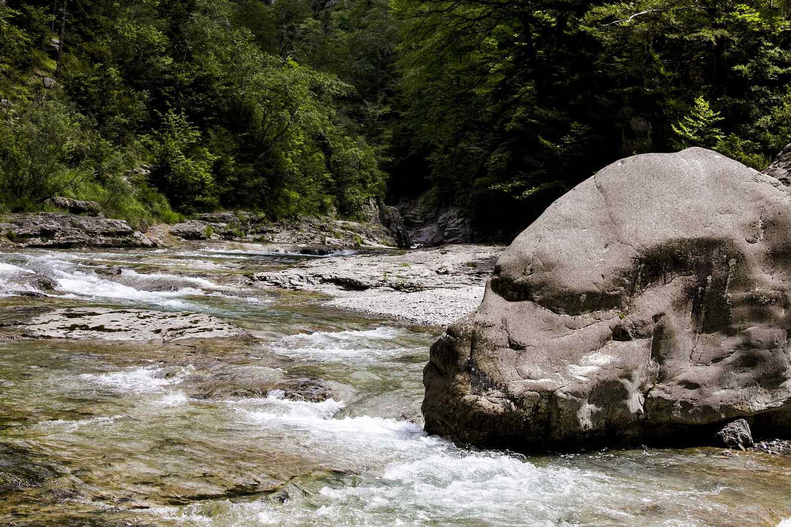 🌳✨ Facilísima y espectacular Excursión en el Cañón de Añisclo, de San Úrbez a Cumaz