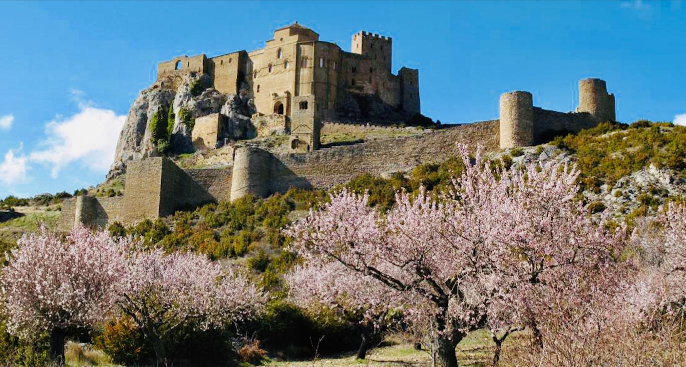 🌸 La Floración del Almendro en Huesca entre las 10 mejores de España